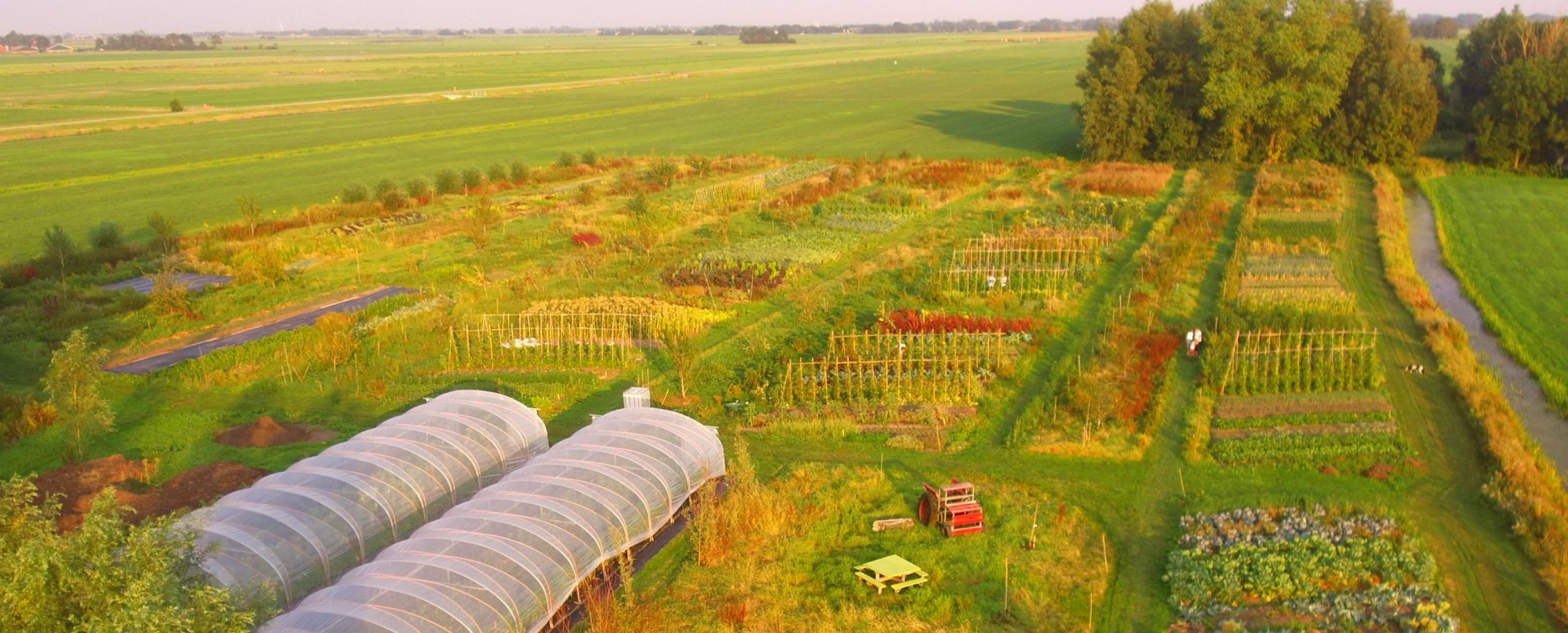 Verdiepingscursus Agro-ecologie voor Tuinders